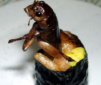 سوشي الحشرات-غرائب وعجائب-منتهى