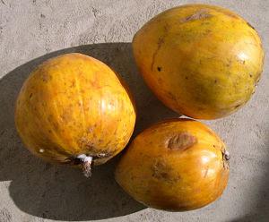 sapote yellow peau