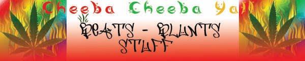Cheeba-Cheeba Yall