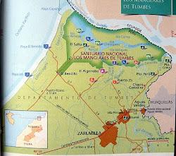 Santuario Los Manglares de Tumbes.Mangrove Sanctuary of Tumbes..