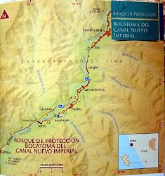 """Bosque de Protección """"Bocatoma del canal de Nuevo Imperial"""". rotected Forest """"Intake Canal New Im"""