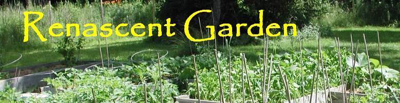 Renascent Garden