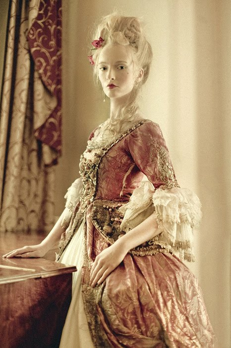 Rosa nitida 12 steps to become a gothic aristocrat for French rococo fashion