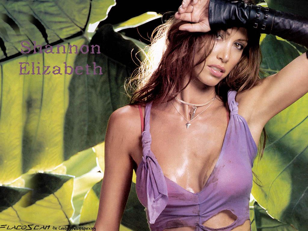 http://1.bp.blogspot.com/_Nzn6d4OeWd8/TIL3cs5uUcI/AAAAAAAAAmo/4PPrni7jQIc/s1600/shannon-elizabeth_18.jpg