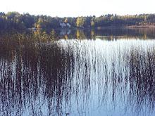 Höstbild vid sjön