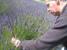Real Men Pick Lavender