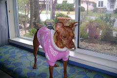 fido fleece coat
