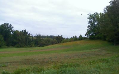 Clagett Farm field