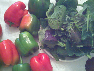 bell peppers and greens from Clagett Farm