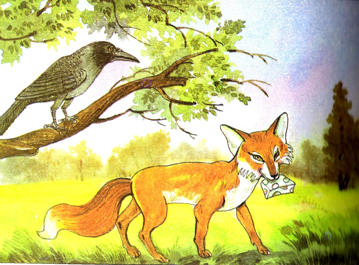 the fox and the crow The fox and the crow read the story and then select the correct answer for each question a crow was sitting on a branch of a tree with a piece of cheese in its beak when a fox came up and saw him.