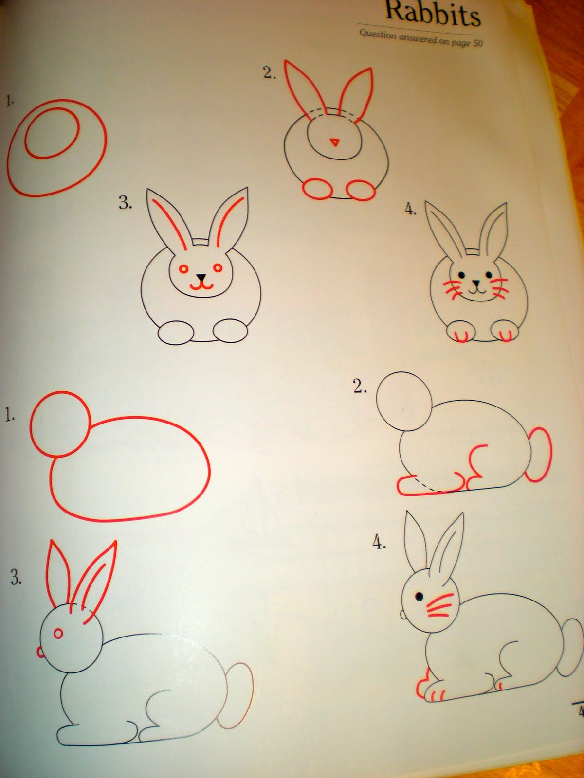 Easter Bunnys With Draw Write Now