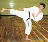 shotokan karate thesis