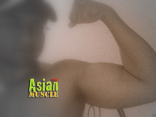 theasianmuscle.blogspot.com