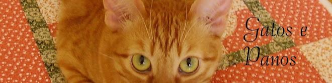 Gatos e Panos