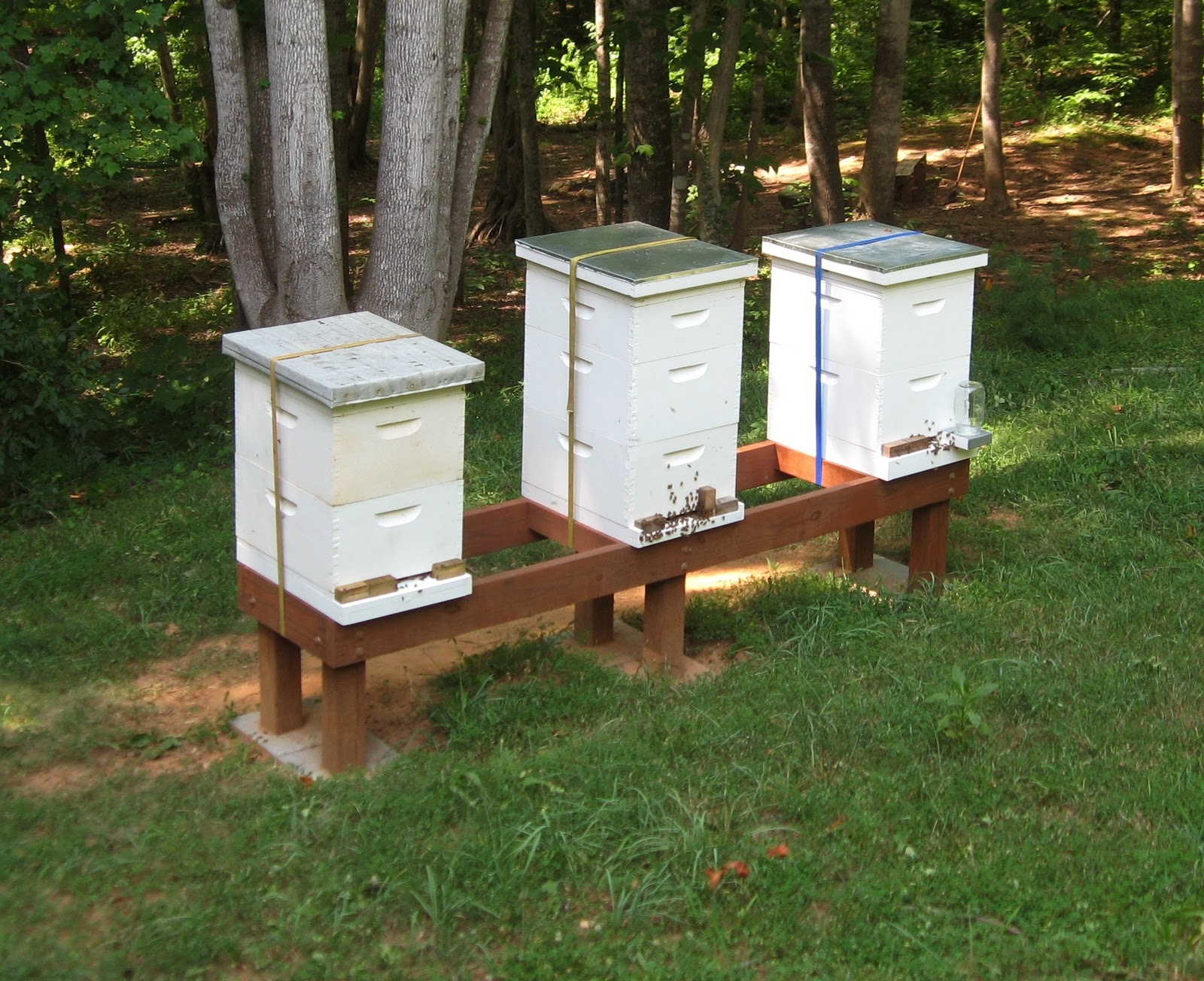 Hive Stand Designs : Beaver creek bees hive stand