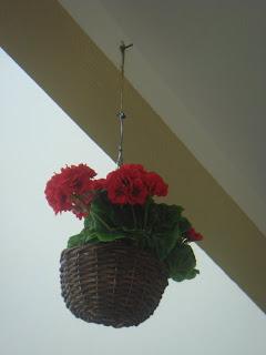 Bahçe ve balkon süsleme resimleri