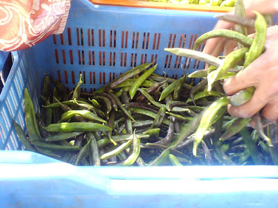 This Week at the Farmer's Market - Green Beans