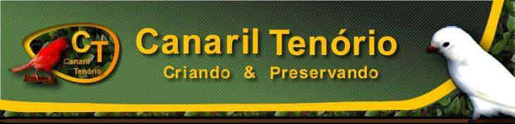 Canaril Tenório