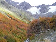 Ladera y de fondo Glaciar Le Martial.