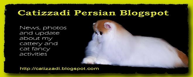 Catizzadi Persian