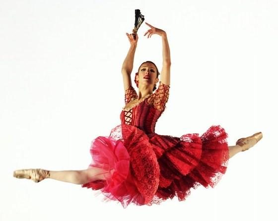 ballerina%20fly.jpg