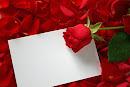 Carta em branco
