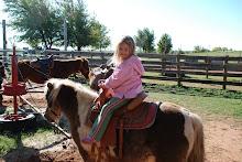 Maddie on the Pony