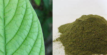 How To Make Kratom Extract Resin