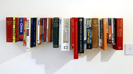 Books On Shelves 550 x 308