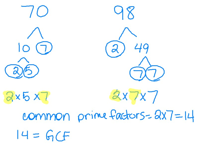 math worksheet : math with mrs d simplifying fractions using factor trees : Math Factor Tree Worksheets