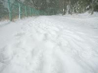 パークウェイ駐車場からの道の積雪