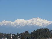 Kanchanjungha