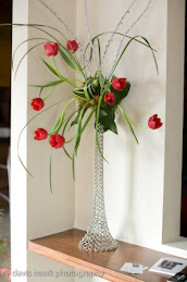 My Favorite-The Tulip