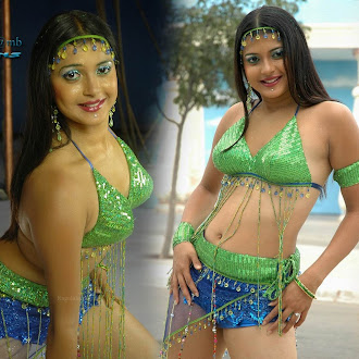 Tamil Actress  Nicole  Sexy Navel, Thigh, Armpit, Clevage Show Gallery