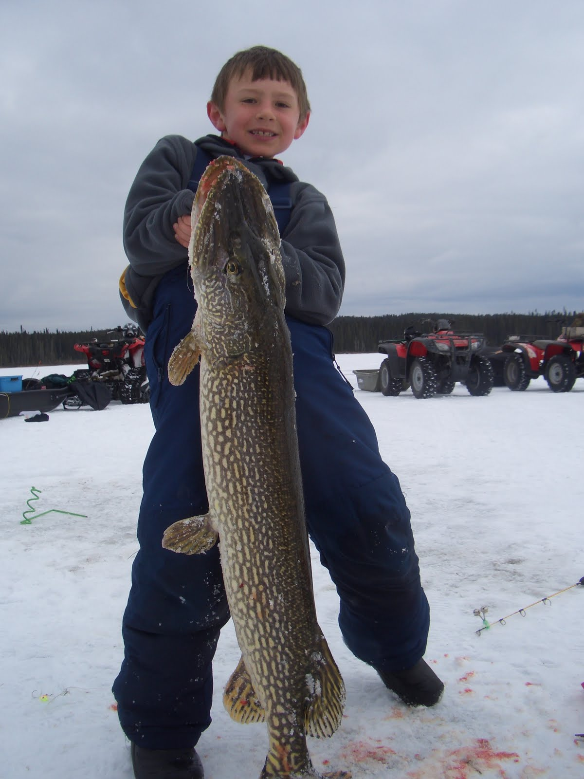 Red lake fishing reports ontario for monster northern pike for Red lake ice fishing