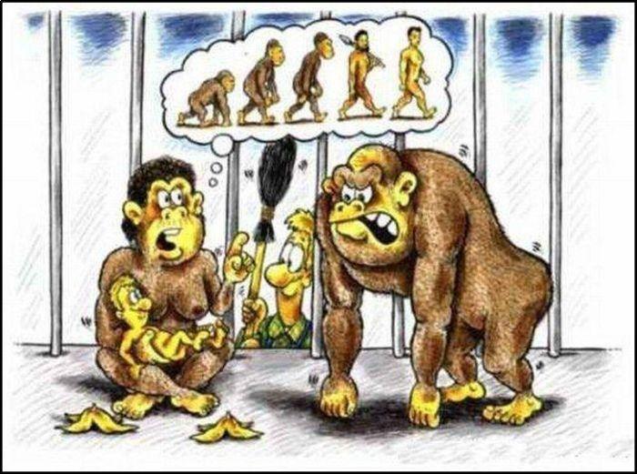 Situs Gambar Kartun Karikatur Lucu Animasi Cartoon Picture