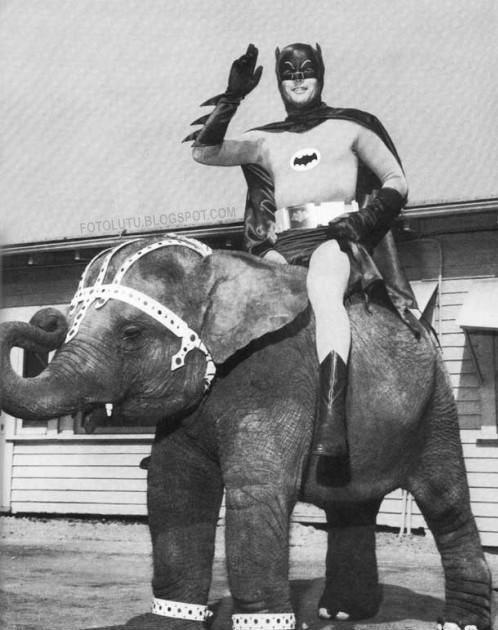 Pahlawan Super Yang Cemen Beraninya Naik Gajah Kecil