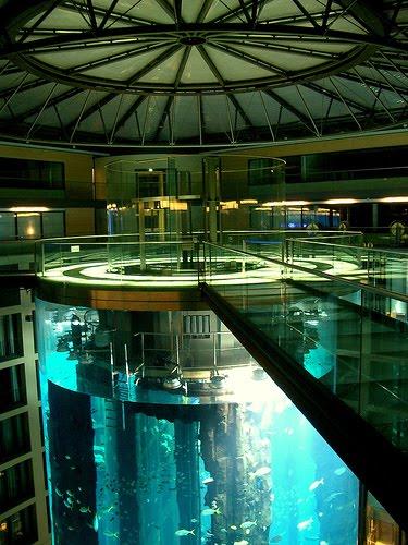 Akuarium Dengan 26 ribu Ikan