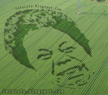 Crop Circle Budi Anduk