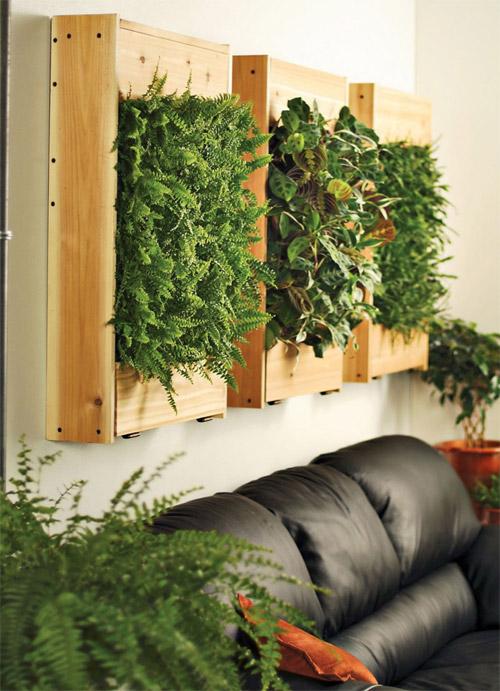 jardim vertical fotos : jardim vertical fotos:Bonita ambientação: sofá de couro preto, painéis de madeira com a