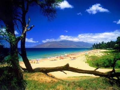 "����� ���� ����� ������� ""��� 1213561778_kihei-beach-maui-hawaii.jpg"