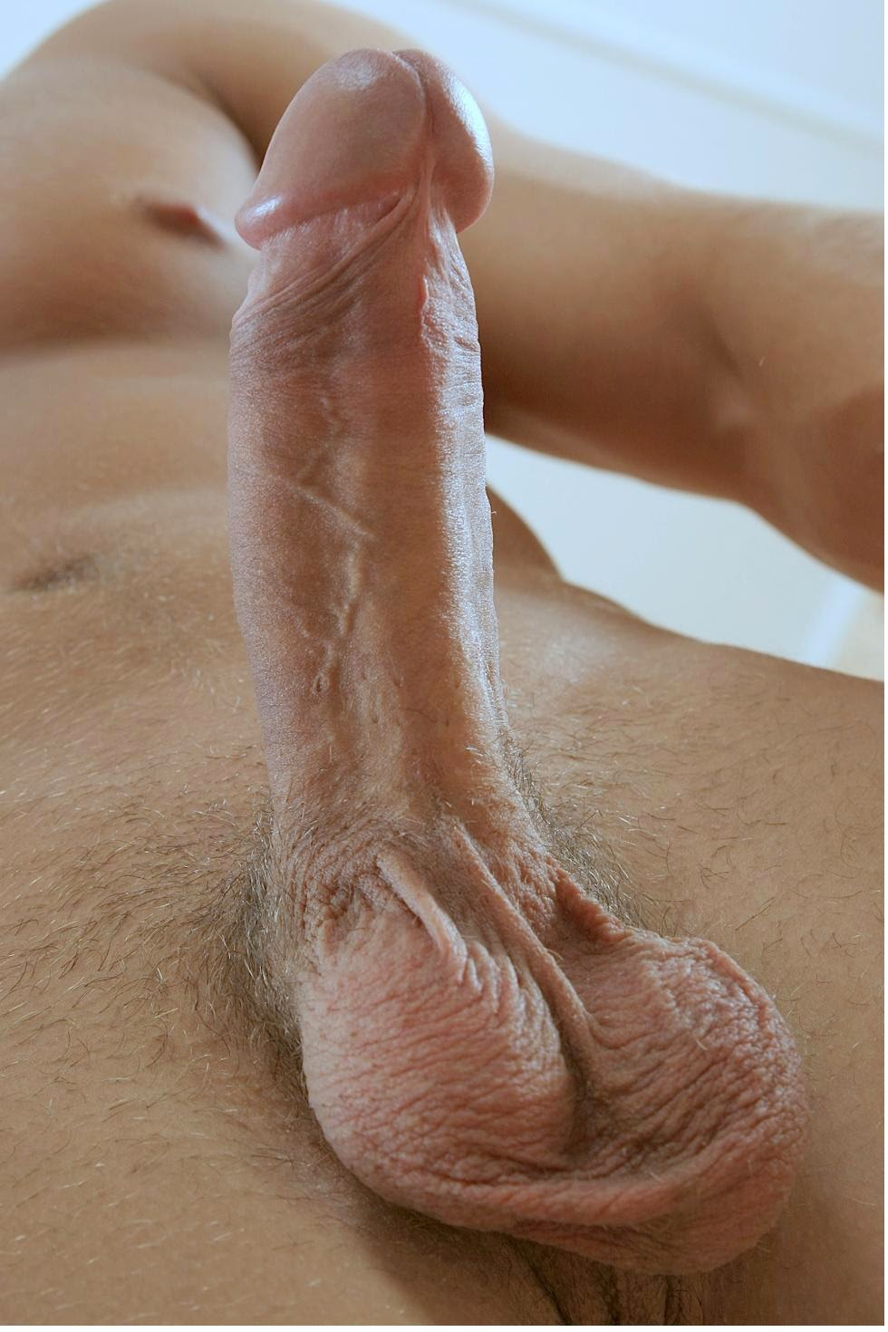 Huge shaved cocks