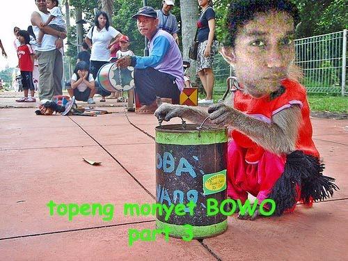 [bowo+monyet5.jpg]