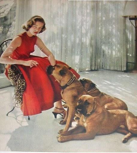 K Billingham Greyhound Widening Circle: The B...