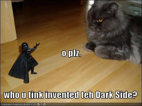 funny cat picture - funny cat pictures-lolcat-invented-dark-side