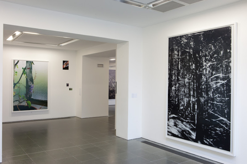 wolfgang tillmans essay As tom holert in his excellent catalogue essay the unforeseen notes, tillmans  the exhibition wolfgang tillmans at moderna  wolfgang tillmans moves freely .