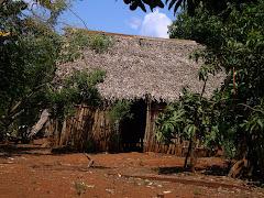 Vivienda típica del Aguacate, Mpio Hueyapan de Ocampo Ver.