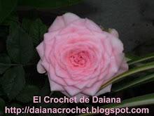 Mimo de Daiana
