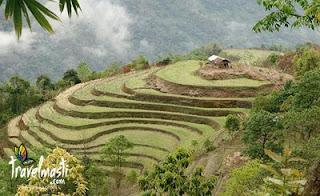 Nagaland Tours