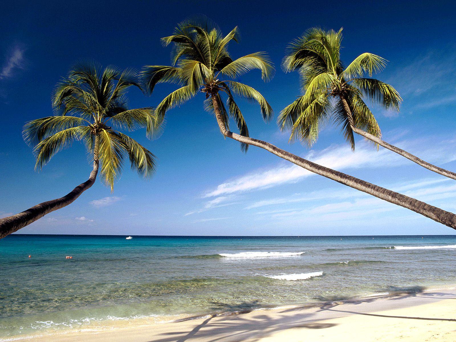 http://1.bp.blogspot.com/_OTLWHUxsXVQ/S8mh8NMFobI/AAAAAAAAB3w/AQQPK8I1xb0/s1600/Kings-Beach-West-Coast-Barbados-West-Indies.jpg